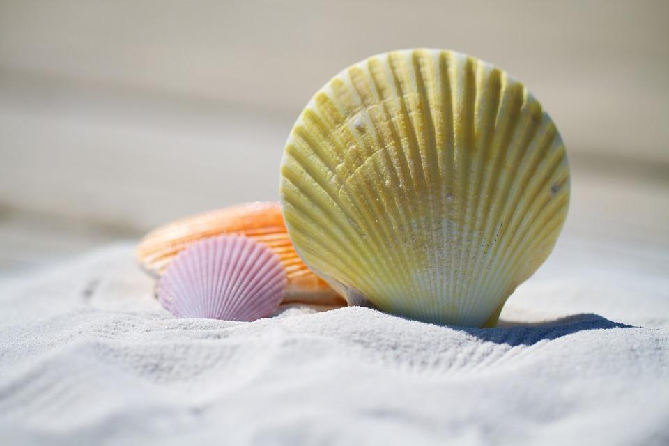 Dok se ne istope boje: Najšarenije plaže na svetu