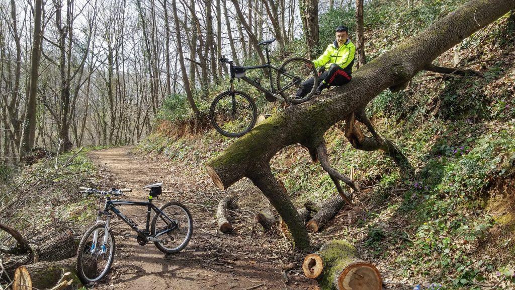 Beogradska šuma na Bosforu: Carigrad građen srpskom rukom