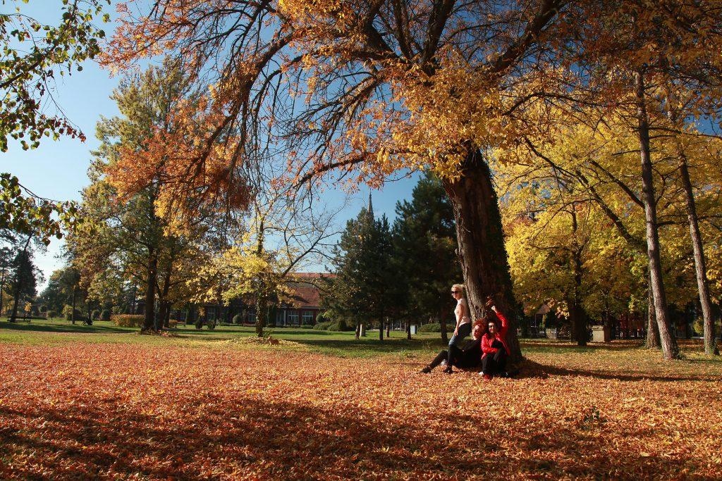 Zrenjaninska jesen: Kada Begej gradu ponudi život i lepotu, a grad ponudu ne odbije (VIDEO)